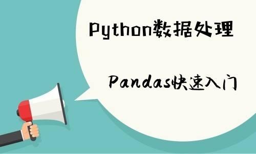 Pandas 进阶之数据的处理